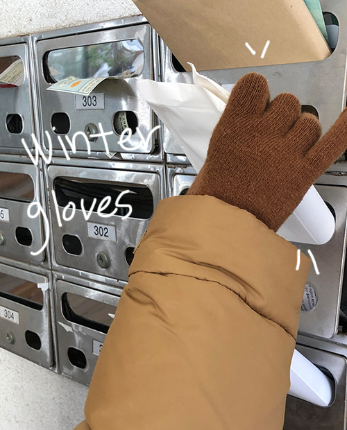 winter gloves / 5colors